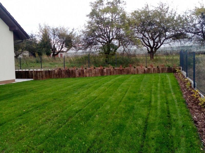 ogród przy domu