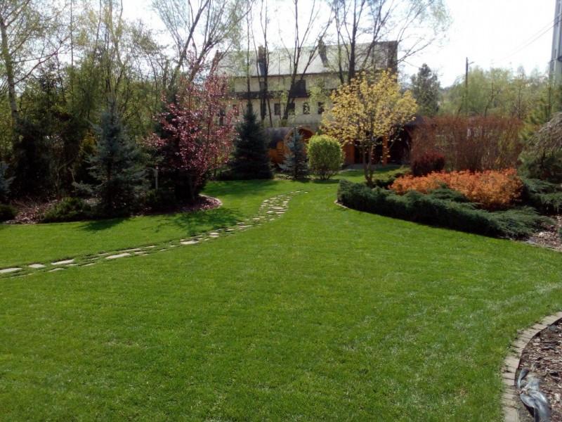 ogród 10 ar